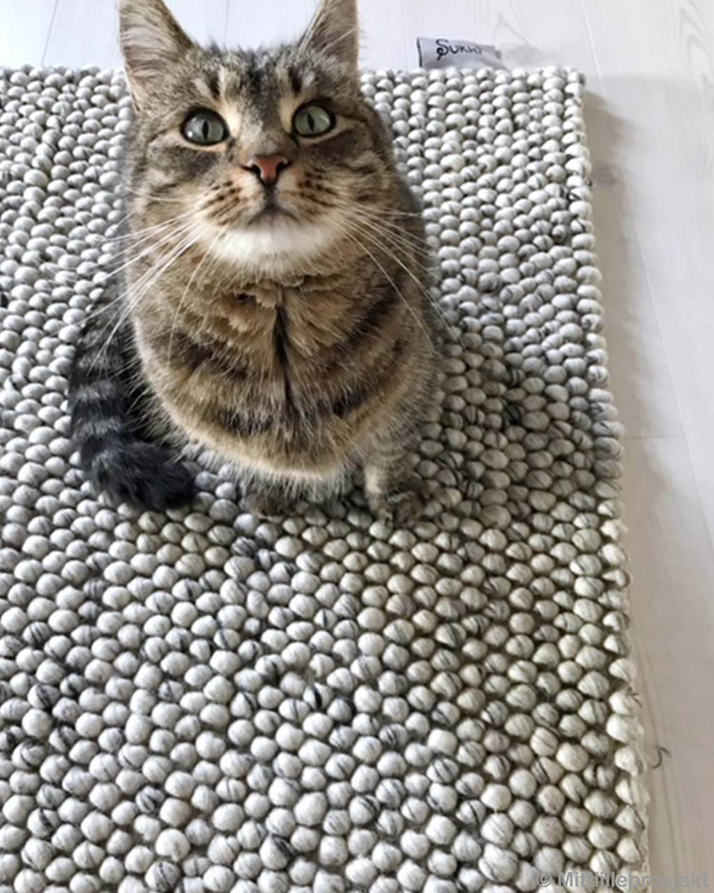 striped cat eastern traditional braided felt ball vintage rugs