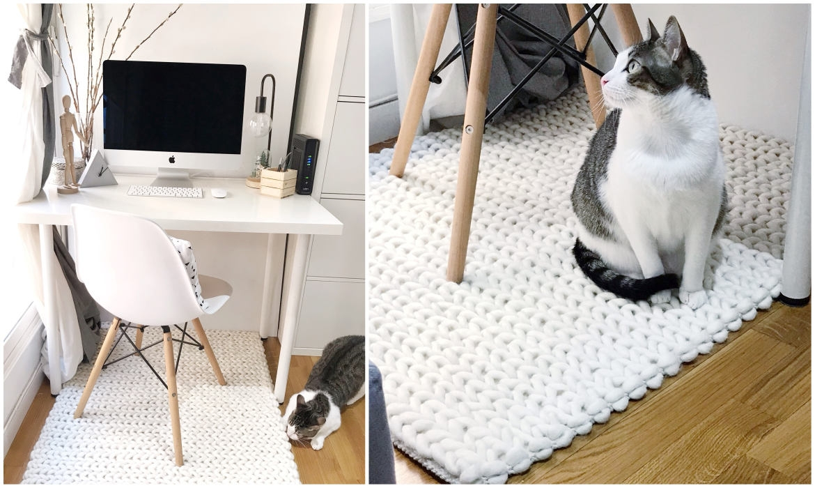 minimalist-home-office-with-while-braided-wool-rug-and-cat